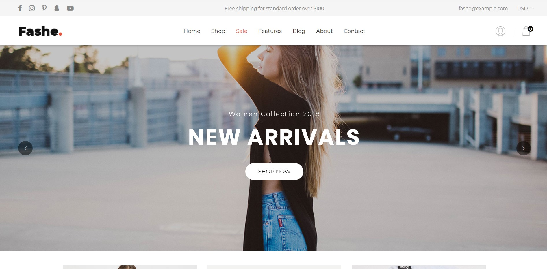 Fashe - eCommerce Website Template